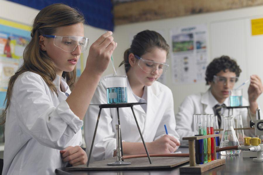 תלמידים עושים ניסויים במעבדה